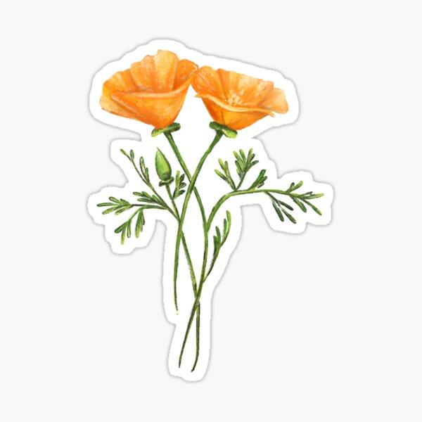 California Poppy Wildflowers Sticker