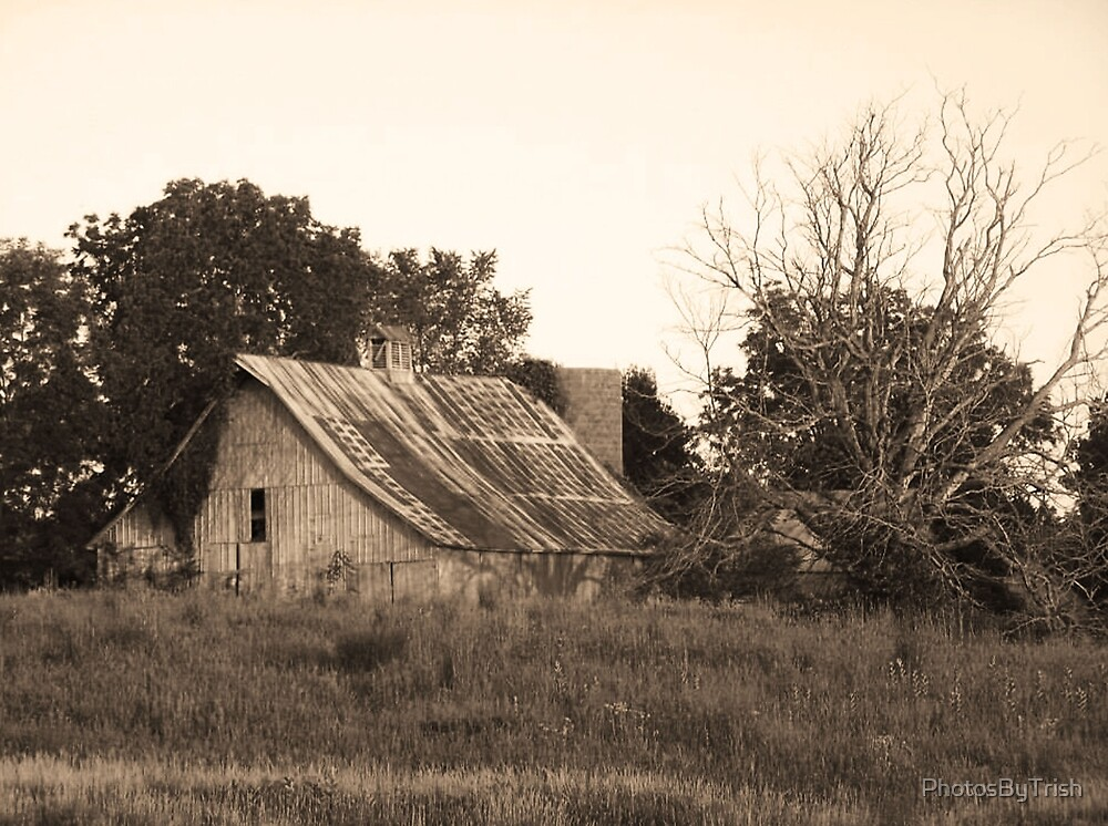 Rustic Barn and Old Tree, Sepia by PhotosByTrish