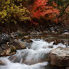 Autumn River 2 by David Kocherhans