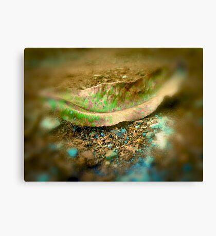 leaf matter Canvas Print