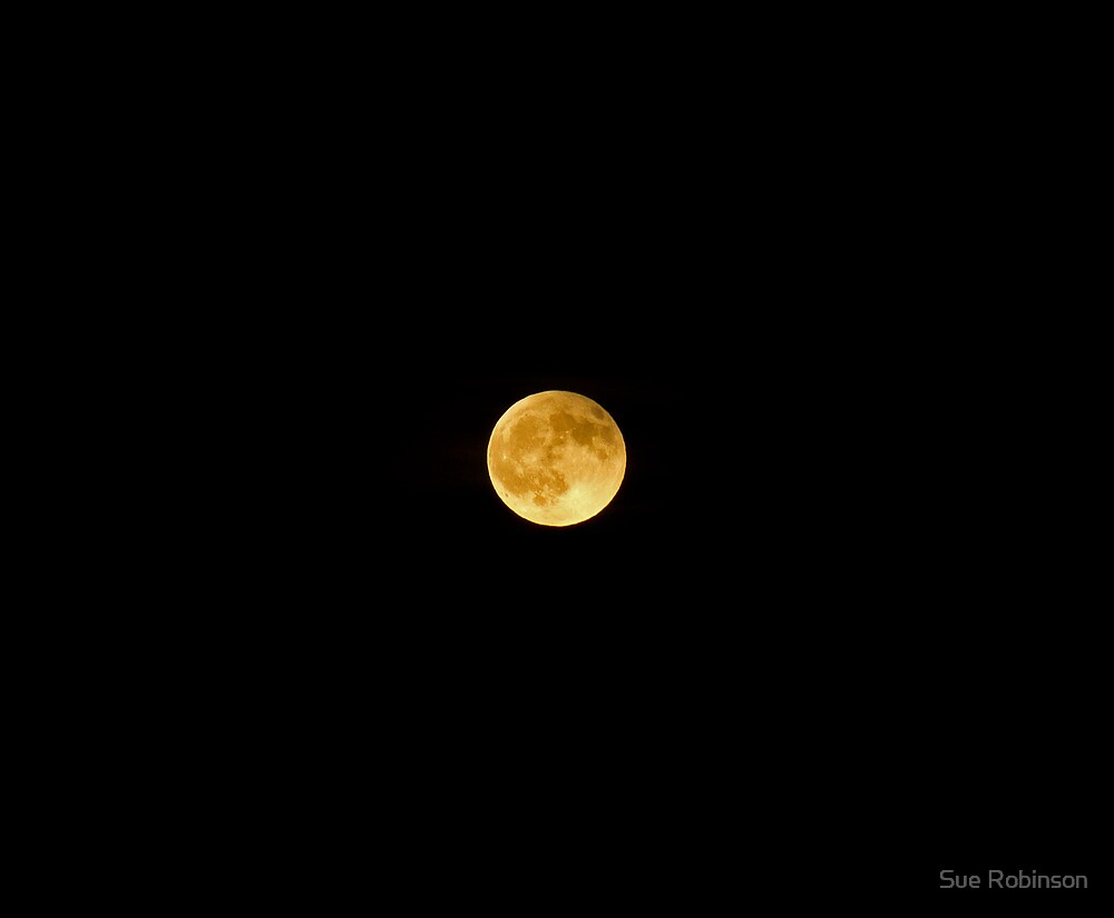 Moon after Eclipse by Sue Robinson
