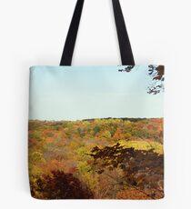 Tinker's Creek Gorge Tote Bag