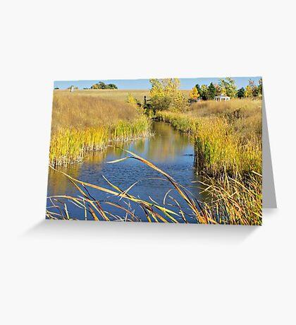 Prairie Creek Greeting Card