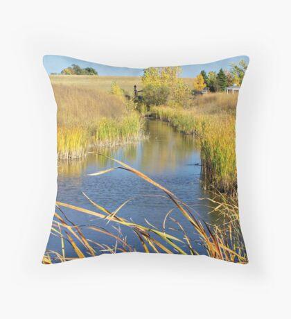 Prairie Creek Throw Pillow