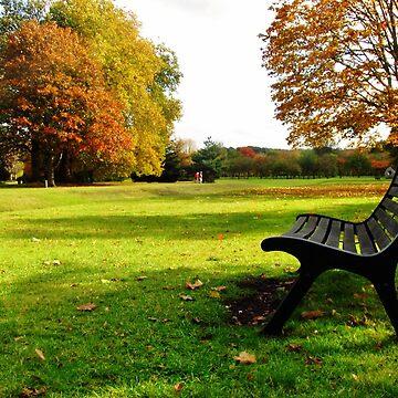Autumn scene   by bethbatch20
