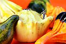 Walking among pumpkin by Paul Ge