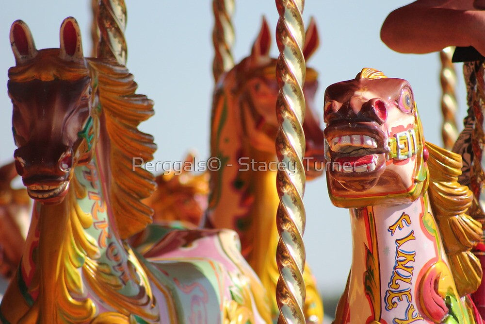 pretty carousel horses by Perggals© - Stacey Turner