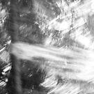 2012 - the snow blizzard by Ursa Vogel
