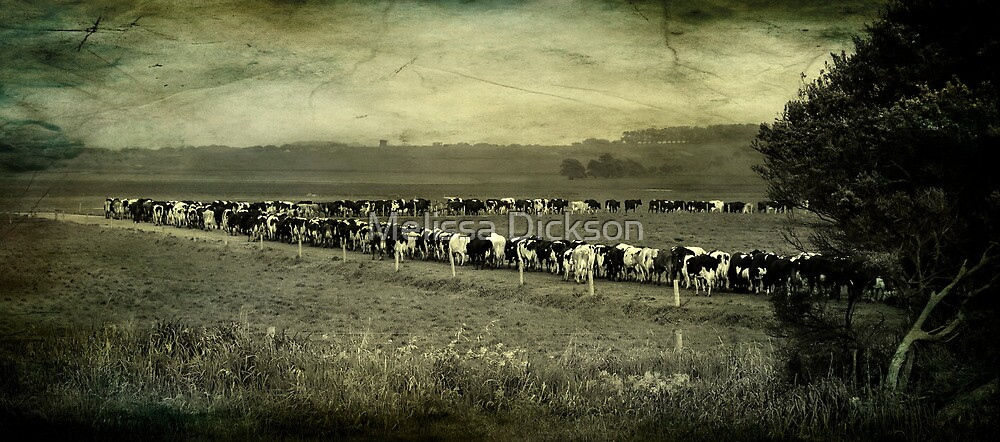 till the cows come in by Melissa Dickson
