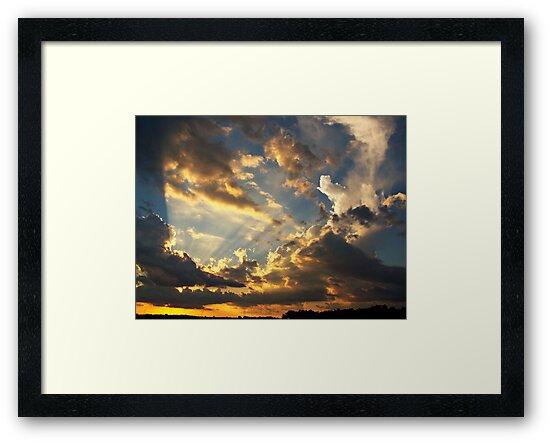 Sunburst by Greg Belfrage