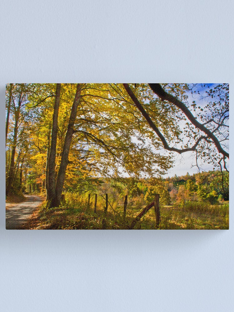 Alternate view of Down a Country Road Canvas Print
