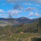Lugnaquilla mountain-Ireland by DES PALMER