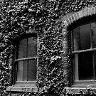 The Garden Windows by orianne