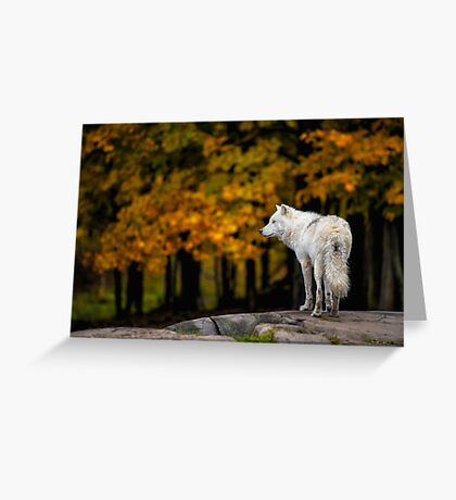The Sentry Greeting Card