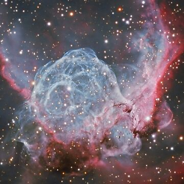 Supernova Remnants by SOIL
