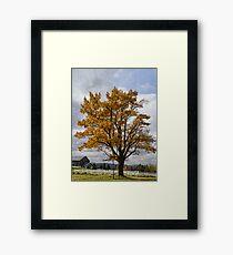 Annual Cascade Framed Print