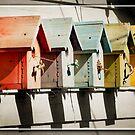Bird House Row by KBritt