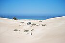 4WD through the Gunyah Sand Dunes by Ian Berry