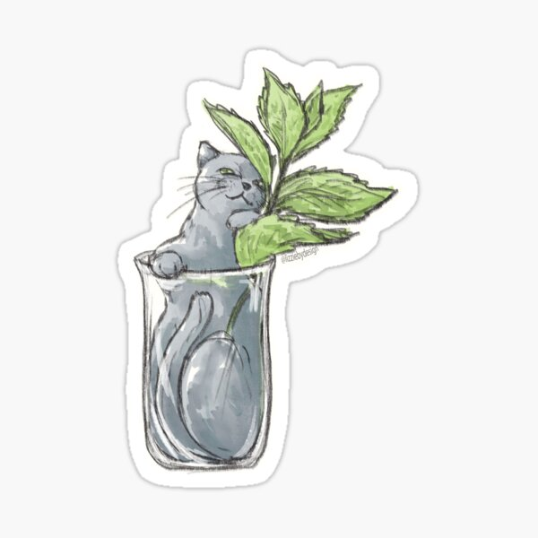 Mint Cat Sticker