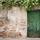 Krems: The Green Door by Jacinthe Brault