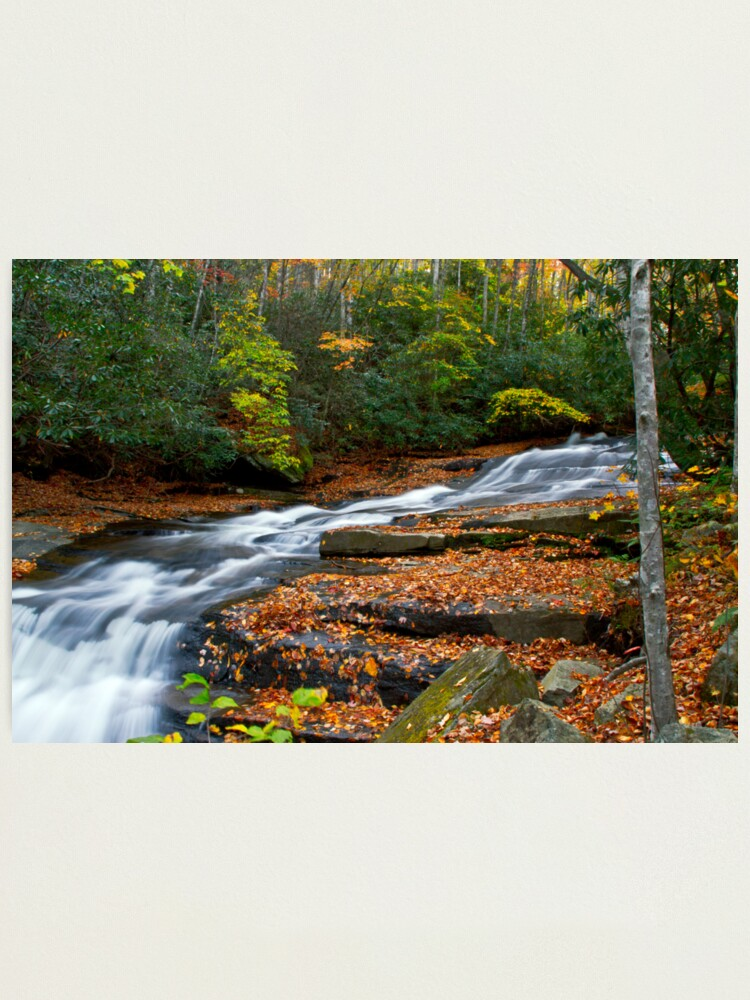 Alternate view of Autumn Flow Photographic Print