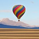 Hot Air Balloon and Longs Peak  by Bo Insogna