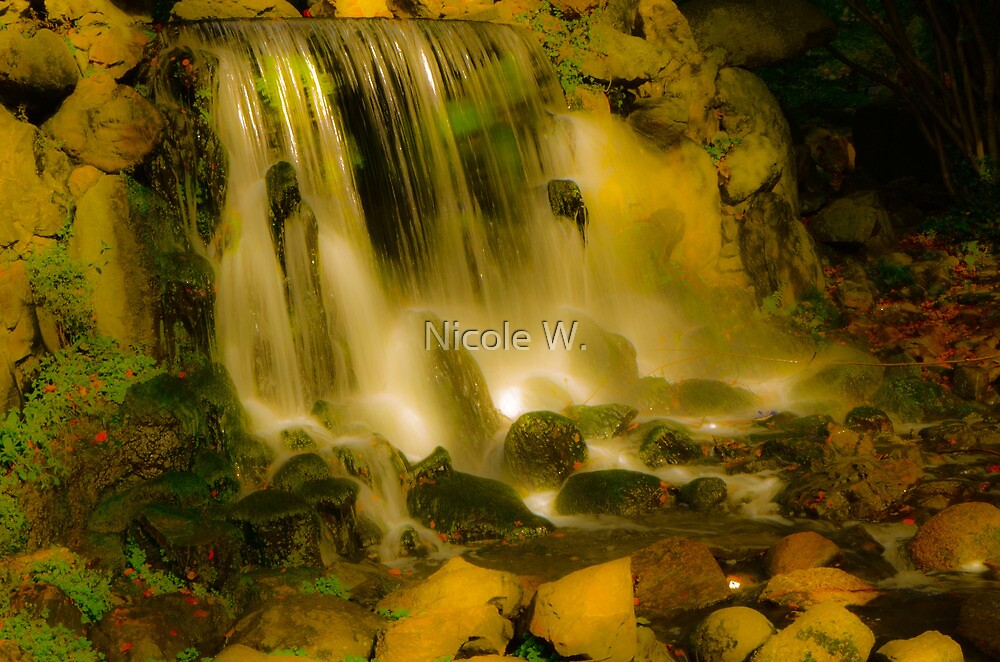 Falling water by Nicole W.
