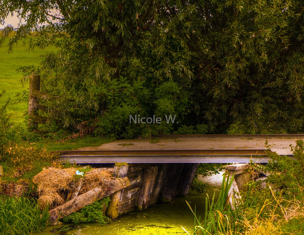 improvised country bridge by Nicole W.