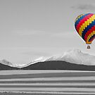 In Their Own World Colorado Ballooning by Bo Insogna