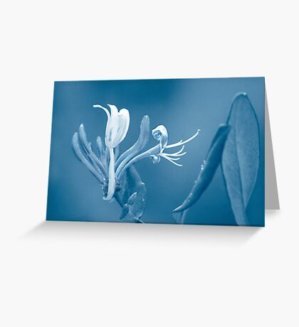 A Paler Shade of Blue Greeting Card