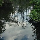 Mirror by Penny Rinker