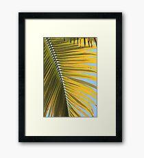 MCC Palm Framed Print