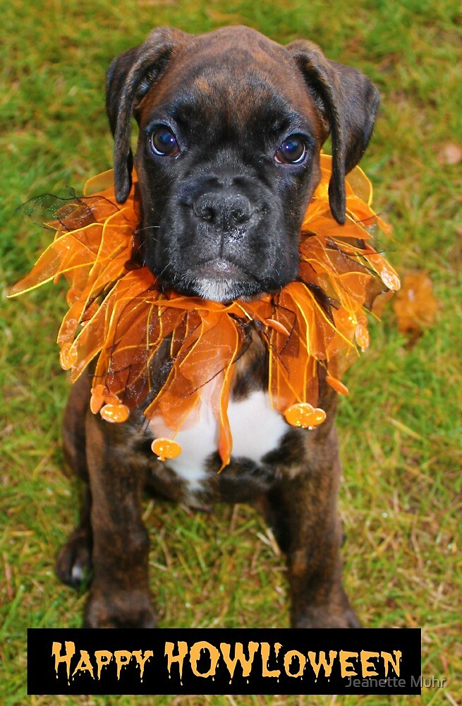 Happy HOWL'oween by Jeanette Muhr