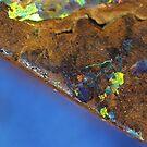 """La Cote d'Azur """"satellite vue"""" by Joel Fourcard"""