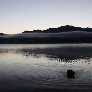 Sunrise swim - Lake Tekapo by Kyra