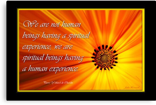 We are not humans having a spiritual experience by JuliaKHarwood
