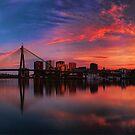 Sunrise at Blackwattle Bay - Panorama by Arfan Habib
