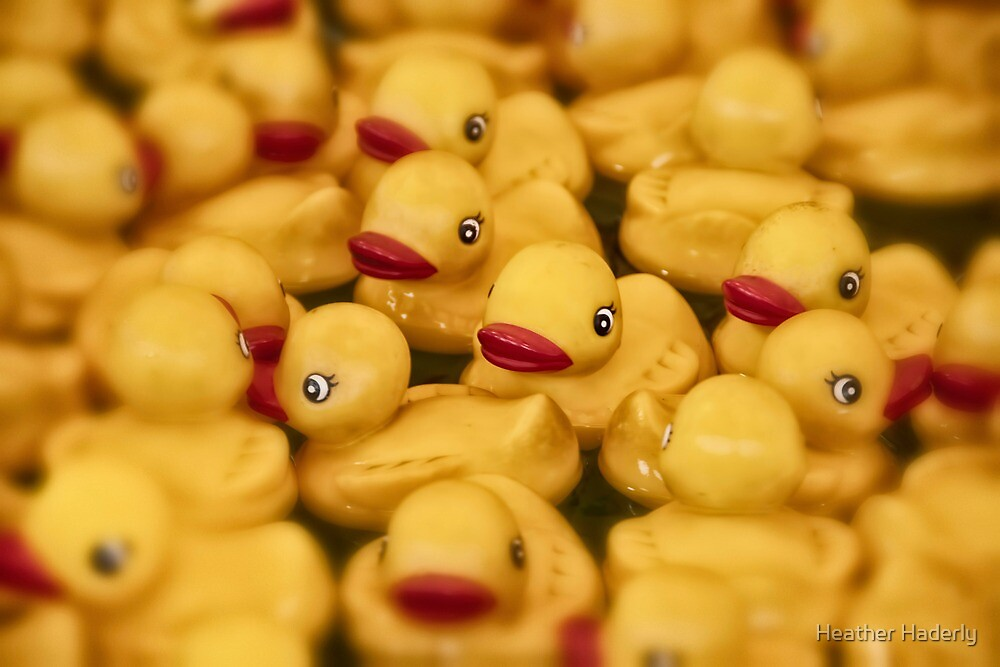 All Your Ducks In A Row by Heather Haderly