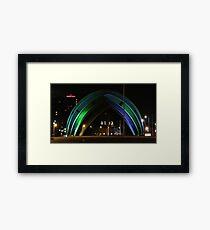 Armadillo Framed Print