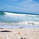 Perfect Wave With Shingle One -  10 10 12 by Robert Phillips