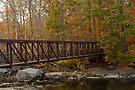 Footbridge Across A Stream - Rural Pennsylvania in Autumn by MotherNature