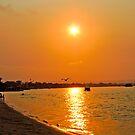 Golden Noosa Sunset 2012 (2) by tunna