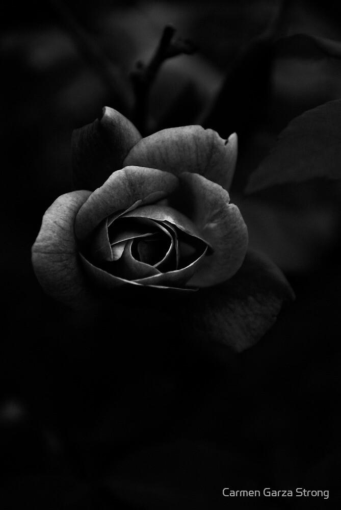 Darkness by Carmen Garza Strong