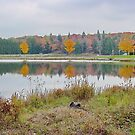 Parker Dam State Park by Penny Fawver