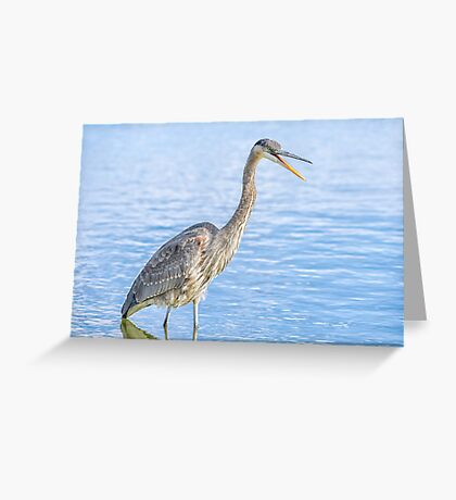 Happy in my pond Greeting Card