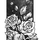Roses in a Box by Paula Stirland