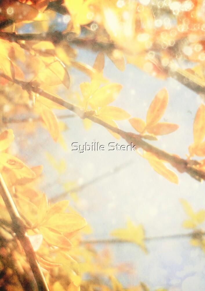 Sunlight by Sybille Sterk
