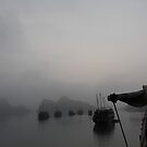 Halong Bay, Vietnam by gertiw