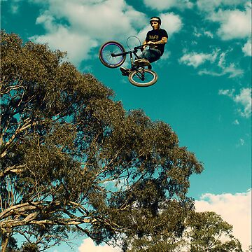 BMX flying over a gum tree by Mossrocket