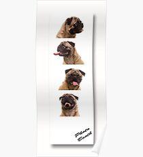 Funny Pug Dog Photo Booth Poster